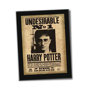 Harry Potter Steckbrief - Undesirable No. 1 Sign